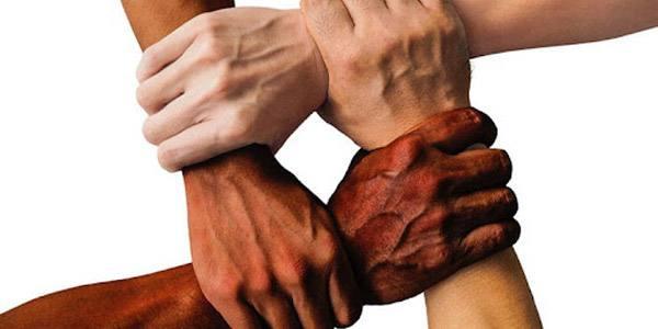 Aforismi sulla diversità